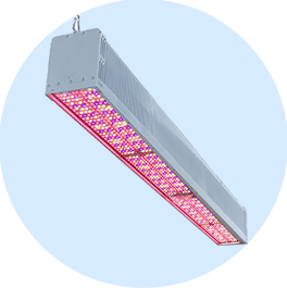 LED Toplighting